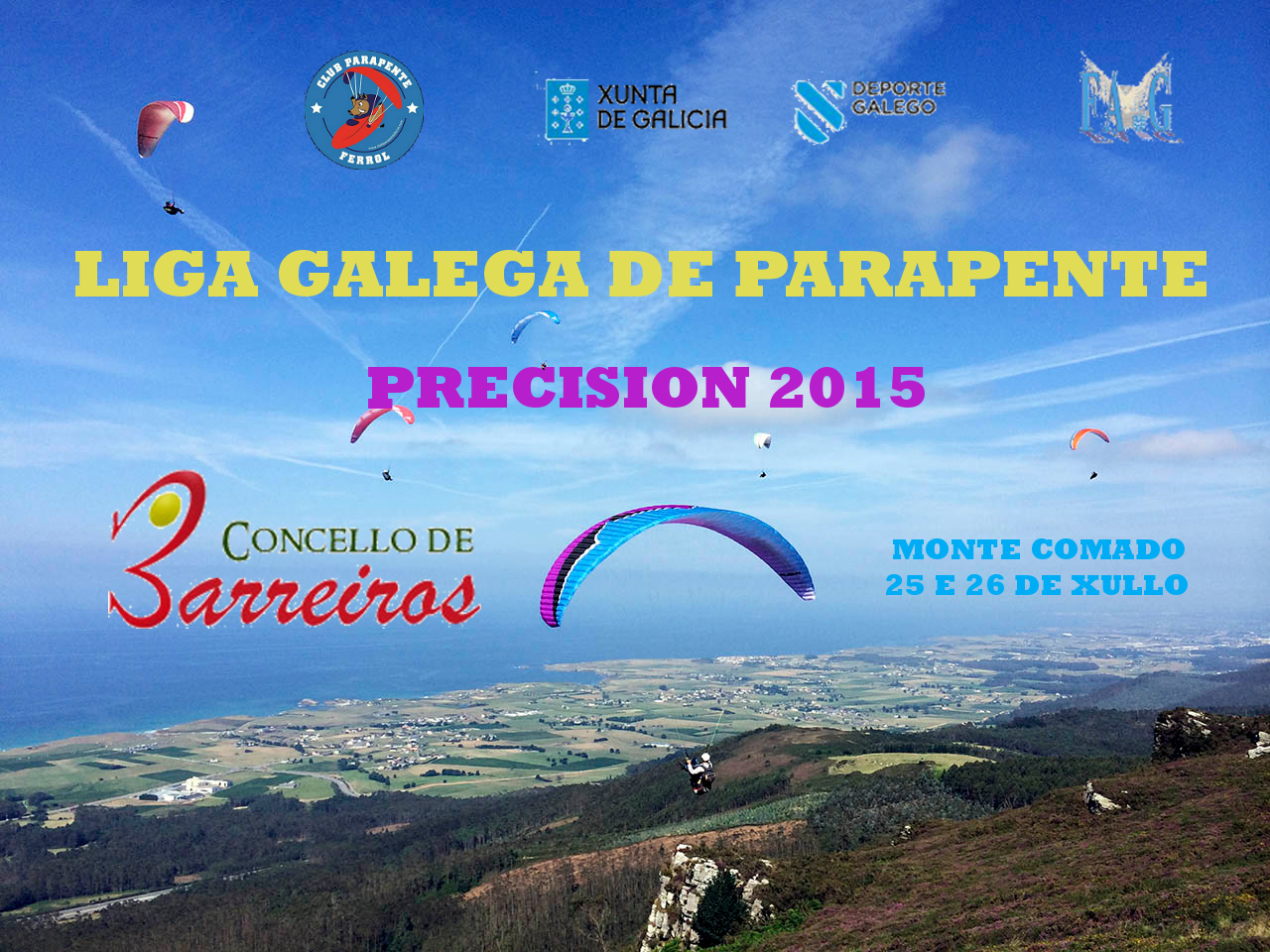 cartelComadoprecision2015